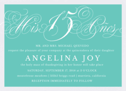 Mis 15 Anos Wedding Invitation