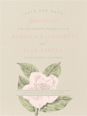 Vintage Rose Save the Date  Save the Date