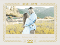Vineyard Romance Save the Date Wedding Invitation